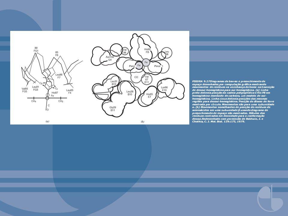 FIGURA 9.27Diagramas de barras e preenchimento de espaço desenhados por computação gráfica mostrando movimentos de resíduos na vizinhança do heme na transição de desoxi-hemoglobina para oxi-hemoglobina.