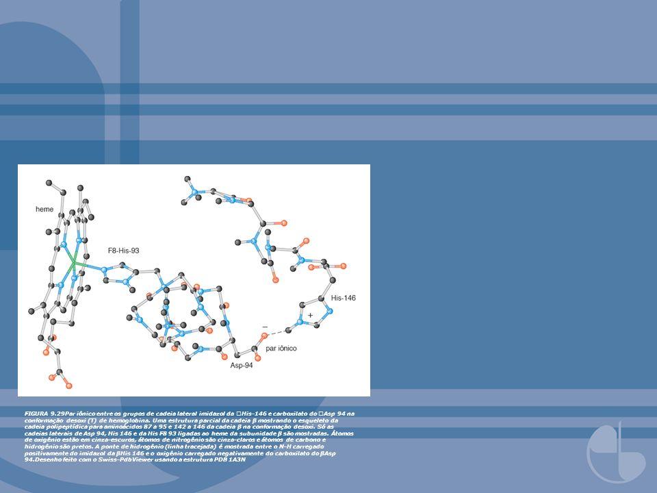 FIGURA 9.29Par iônico entre os grupos de cadeia lateral imidazol da His-146 e carboxilato do Asp 94 na conformação desoxi (T) de hemoglobina.