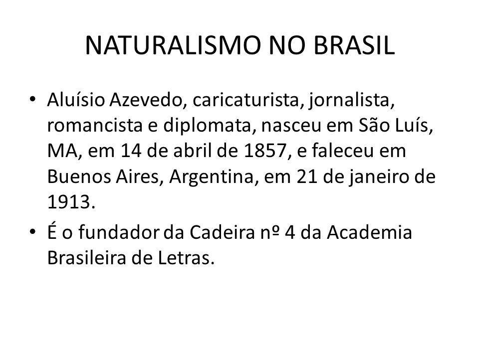 NATURALISMO NO BRASIL