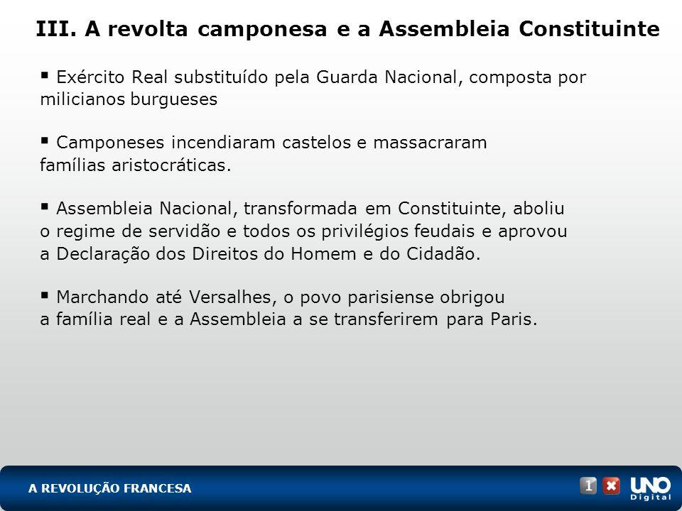 III. A revolta camponesa e a Assembleia Constituinte