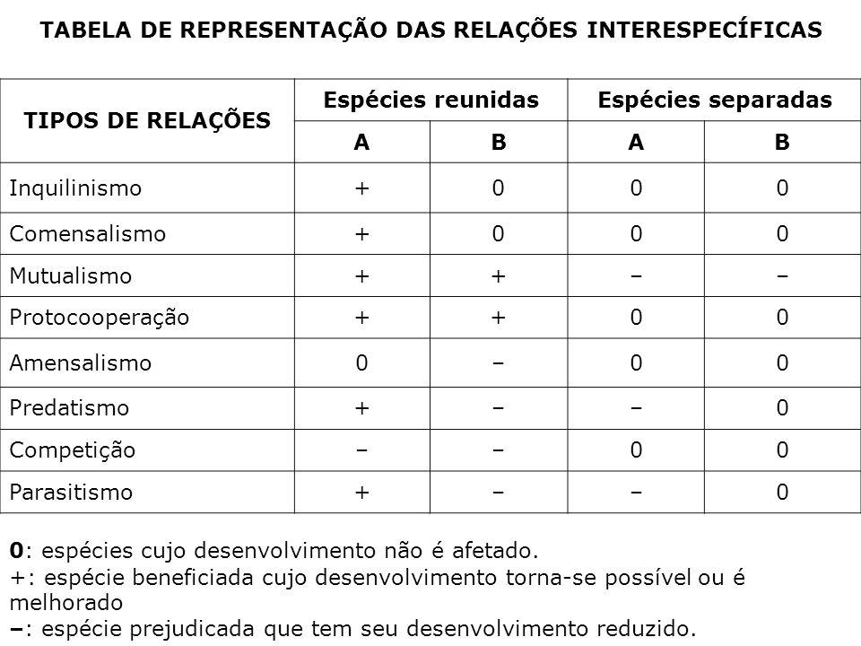 TABELA DE REPRESENTAÇÃO DAS RELAÇÕES INTERESPECÍFICAS
