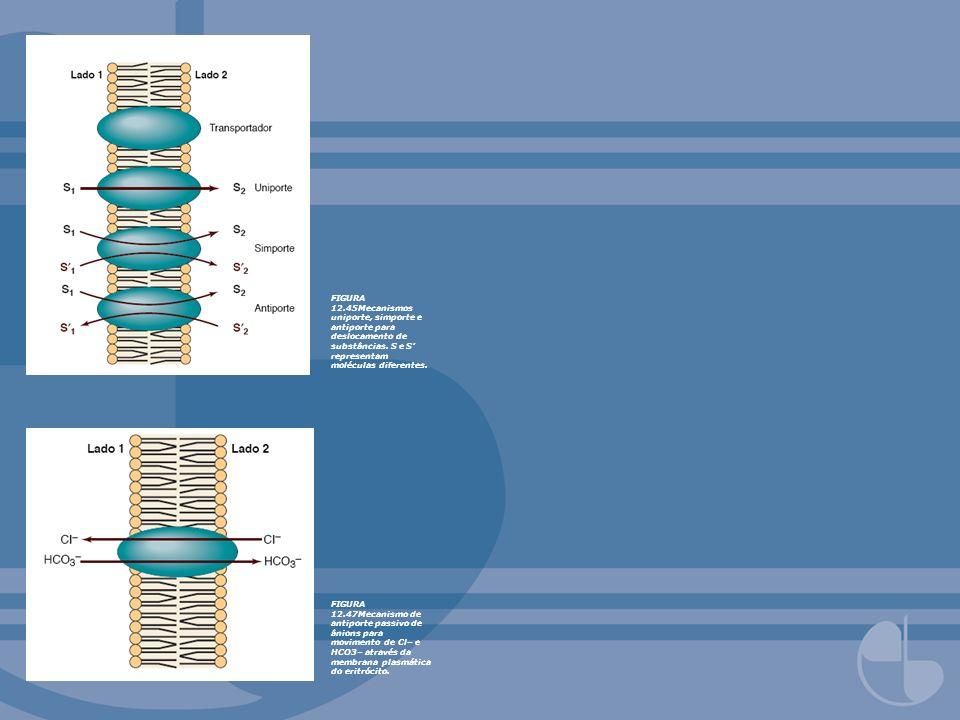 FIGURA 12.45Mecanismos uniporte, simporte e antiporte para deslocamento de substâncias. S e S' representam moléculas diferentes.