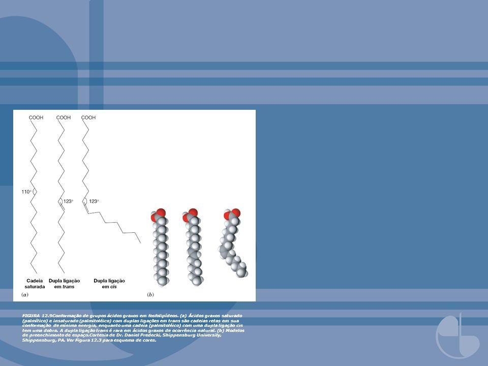 FIGURA 12. 9Conformação de grupos ácidos graxos em fosfolipídeos