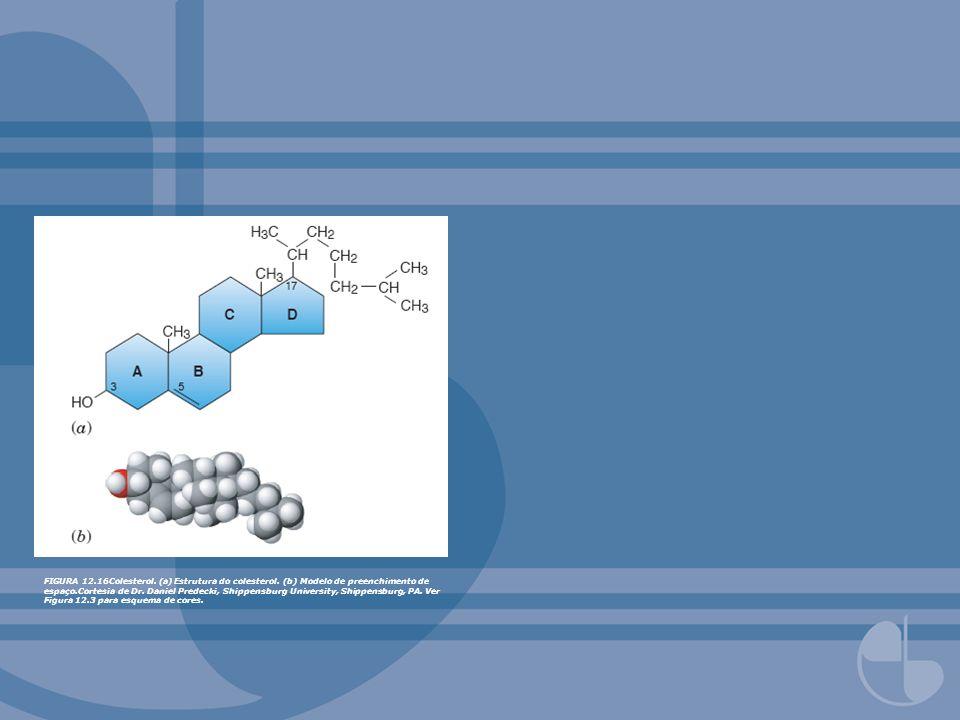 FIGURA 12. 16Colesterol. (a) Estrutura do colesterol