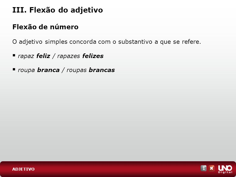 III. Flexão do adjetivo Flexão de número