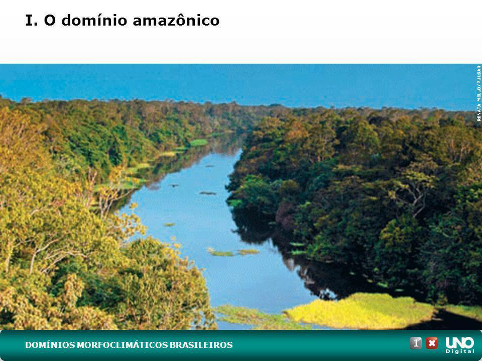 I. O domínio amazônico Geo-cad1-top-7 – 3 Prova