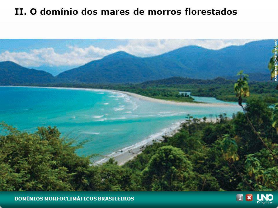 II. O domínio dos mares de morros florestados
