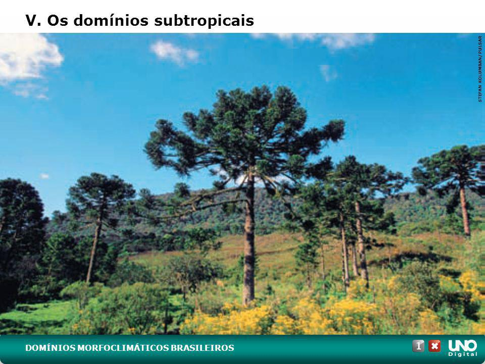 V. Os domínios subtropicais