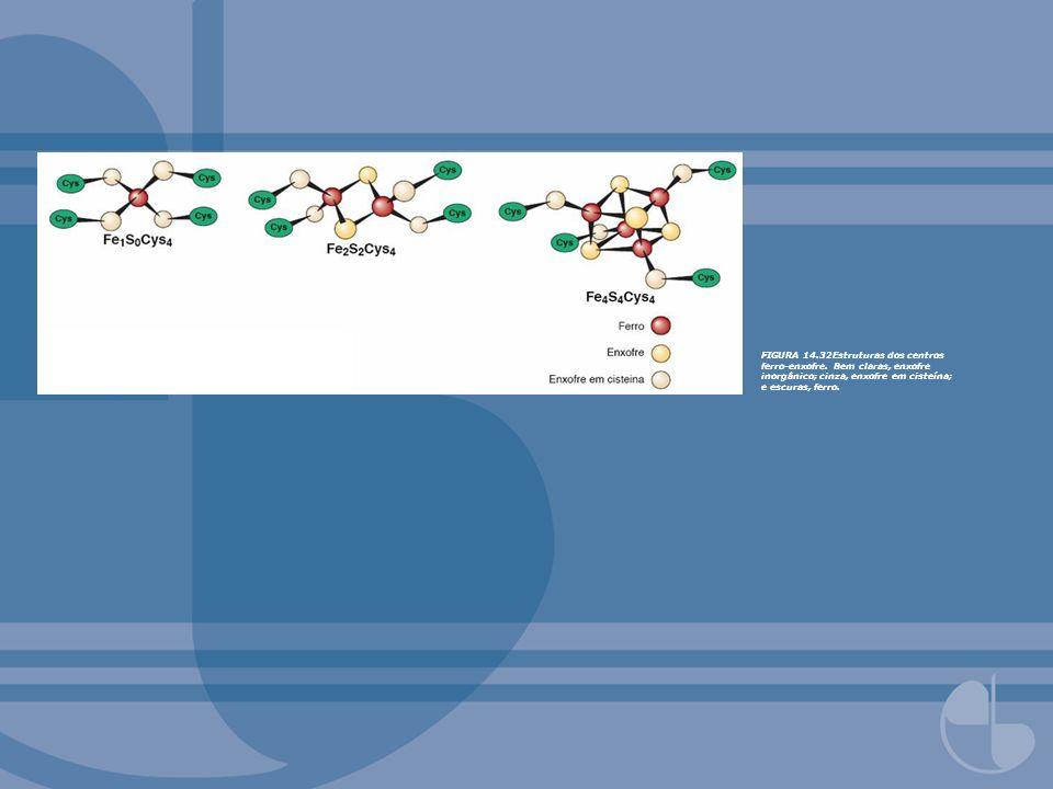 FIGURA 14. 32Estruturas dos centros ferro-enxofre