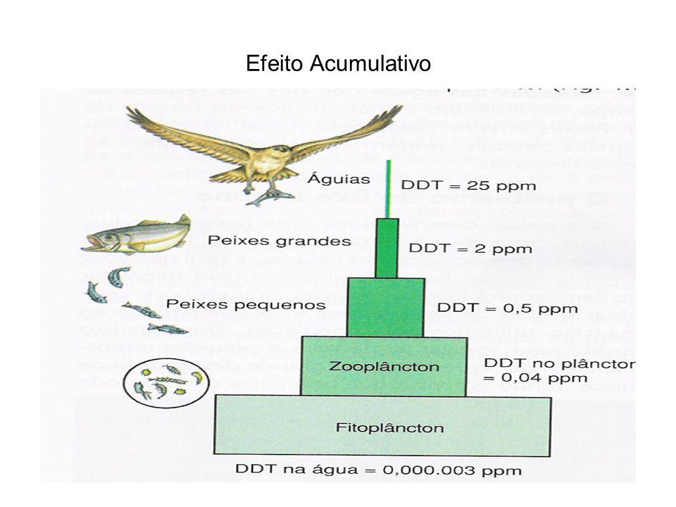 Efeito Acumulativo