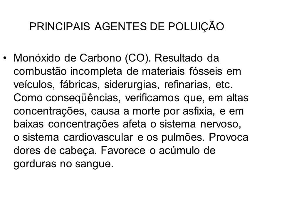 PRINCIPAIS AGENTES DE POLUIÇÃO
