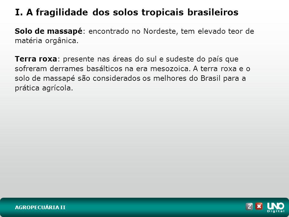 I. A fragilidade dos solos tropicais brasileiros