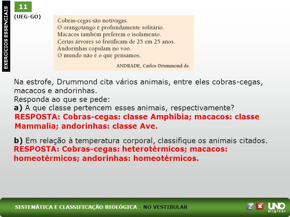 a) A que classe pertencem esses animais, respectivamente