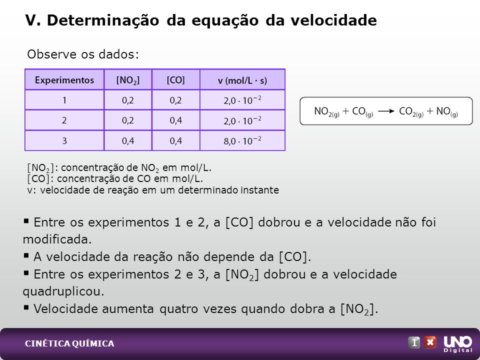 V. Determinação da equação da velocidade