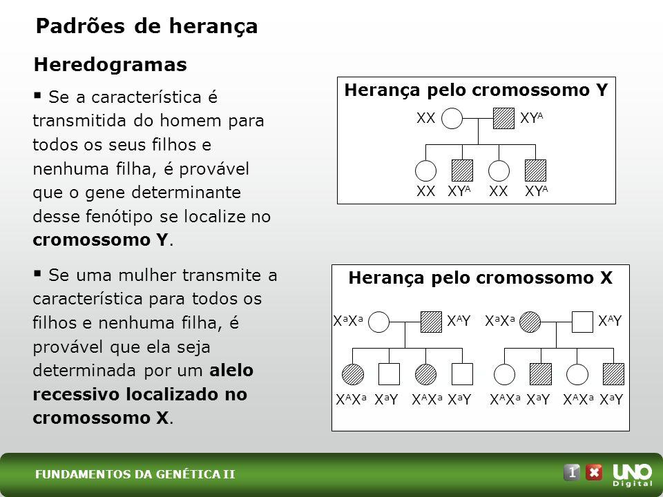 Herança pelo cromossomo Y Herança pelo cromossomo X