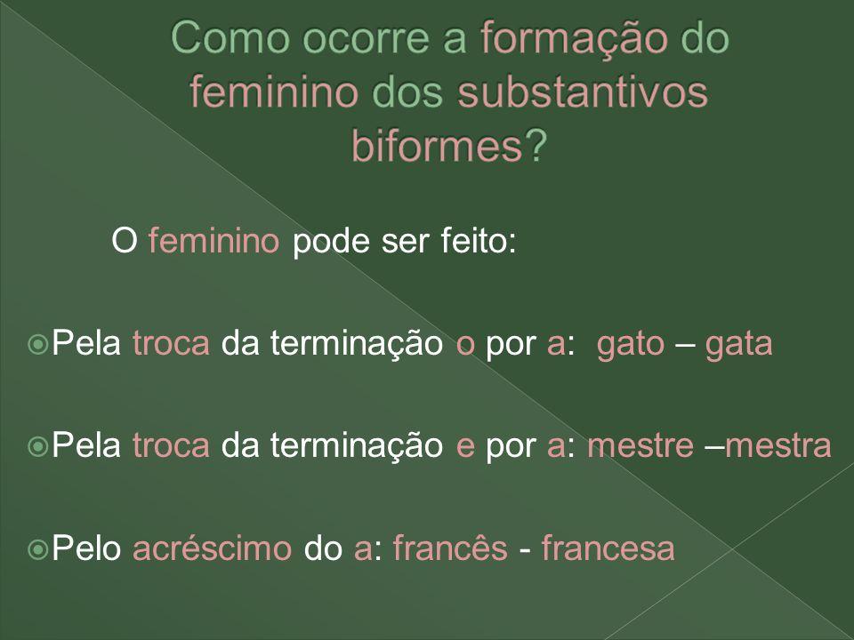 Como ocorre a formação do feminino dos substantivos biformes
