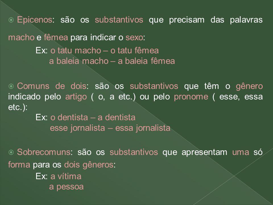 Epicenos: são os substantivos que precisam das palavras macho e fêmea para indicar o sexo: