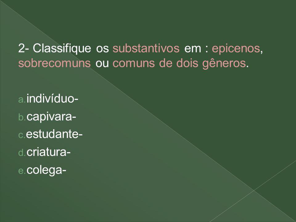2- Classifique os substantivos em : epicenos, sobrecomuns ou comuns de dois gêneros.