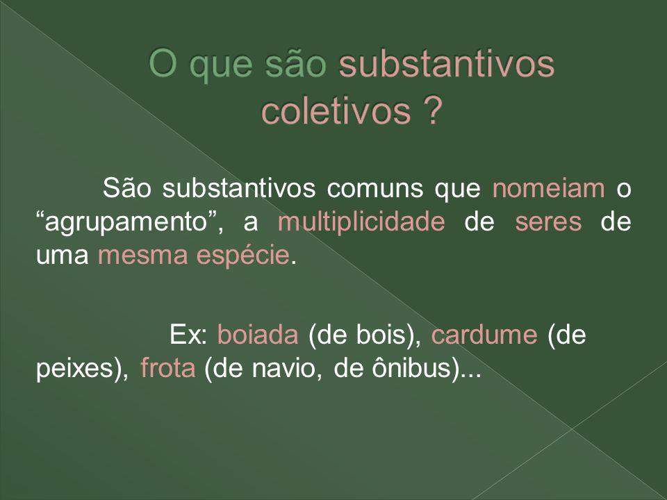 O que são substantivos coletivos