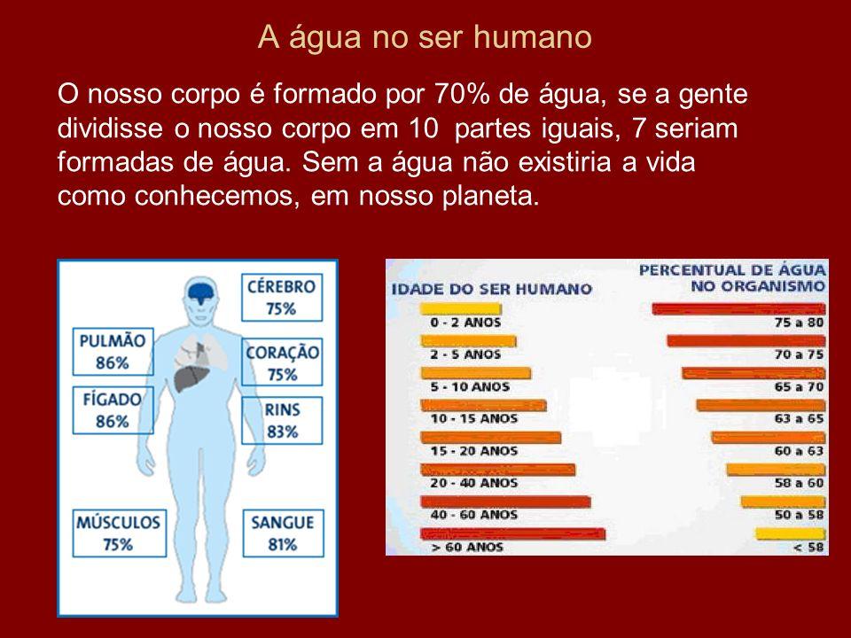 A água no ser humano