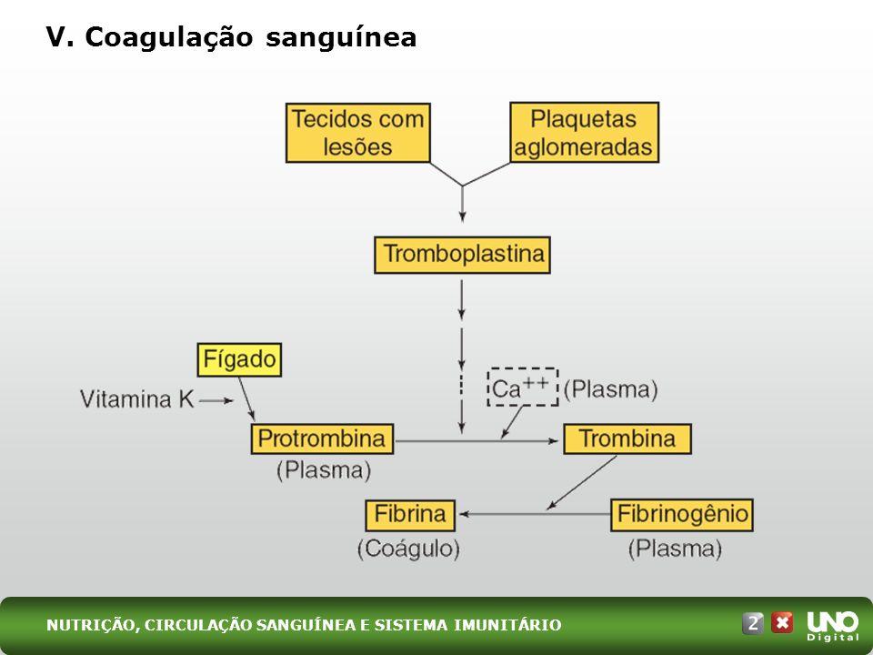 V. Coagulação sanguínea