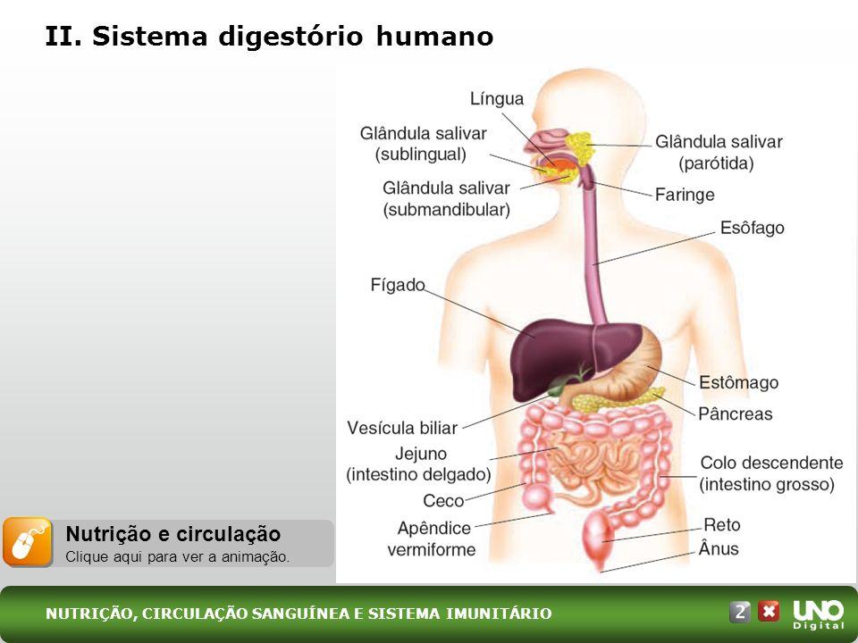 II. Sistema digestório humano