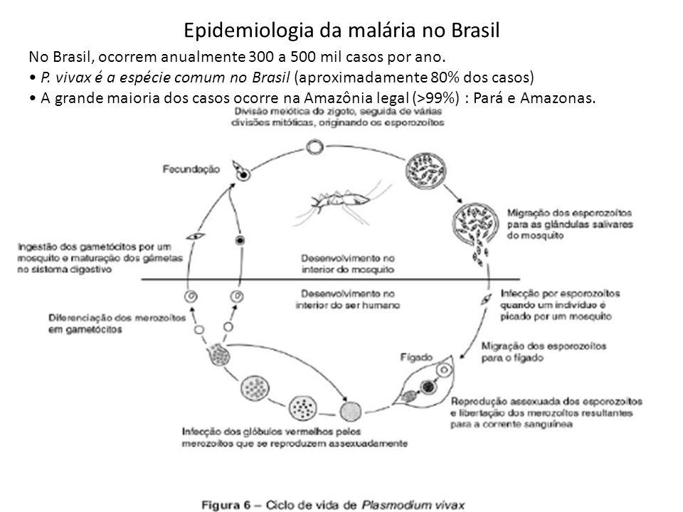 Epidemiologia da malária no Brasil