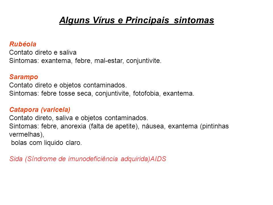 Alguns Vírus e Principais sintomas