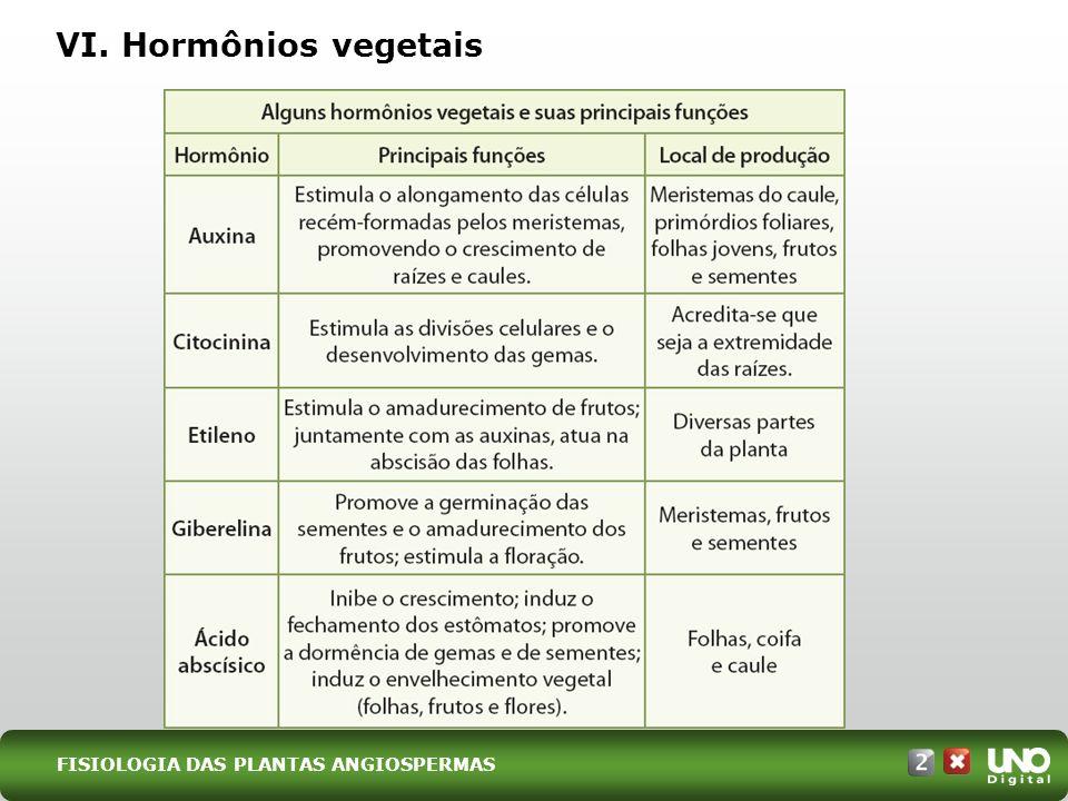 VI. Hormônios vegetais Bio-cad-2-top-3 – 3 Prova