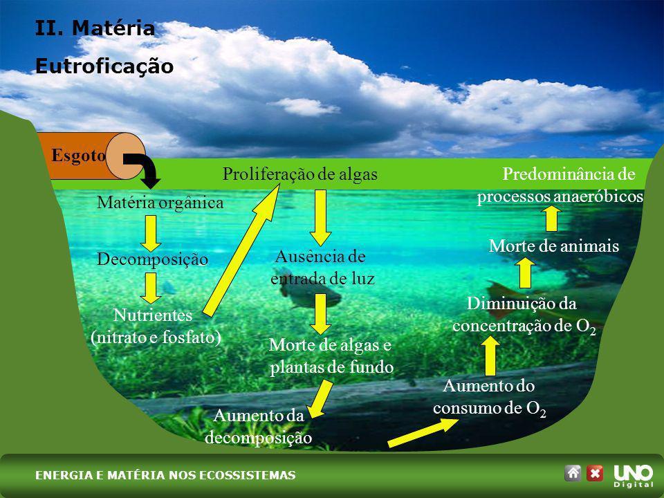II. Matéria Eutroficação Esgoto Proliferação de algas Predominância de