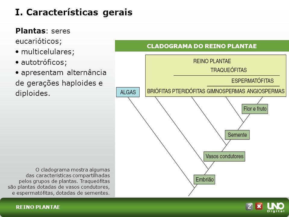I. Características gerais