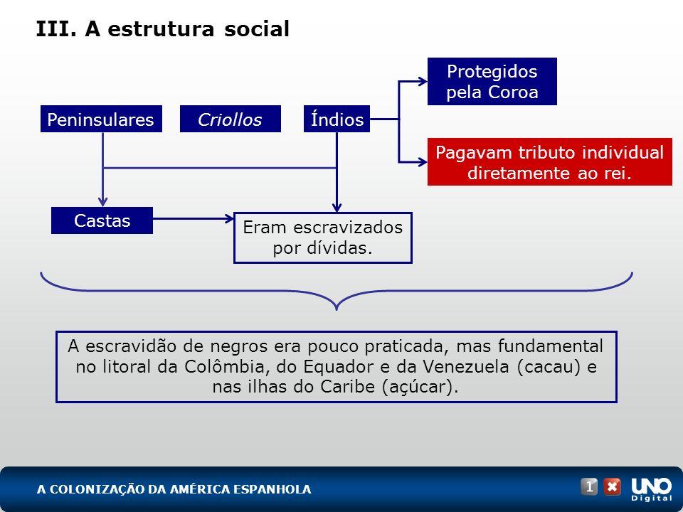 III. A estrutura social Protegidos pela Coroa Peninsulares Criollos