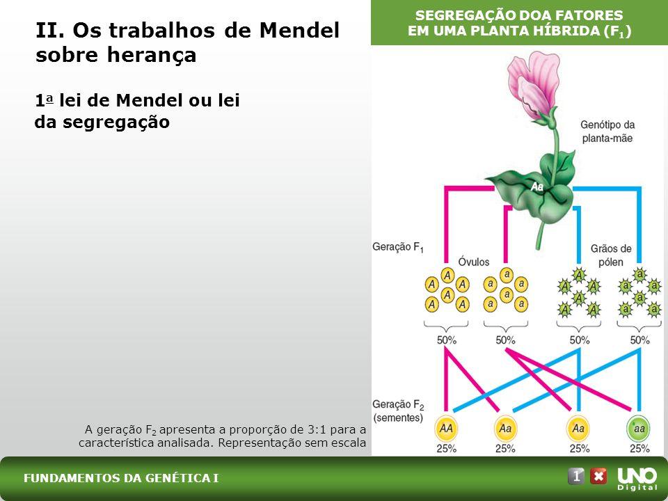 II. Os trabalhos de Mendel sobre herança