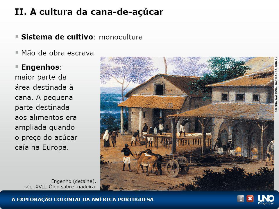 II. A cultura da cana-de-açúcar