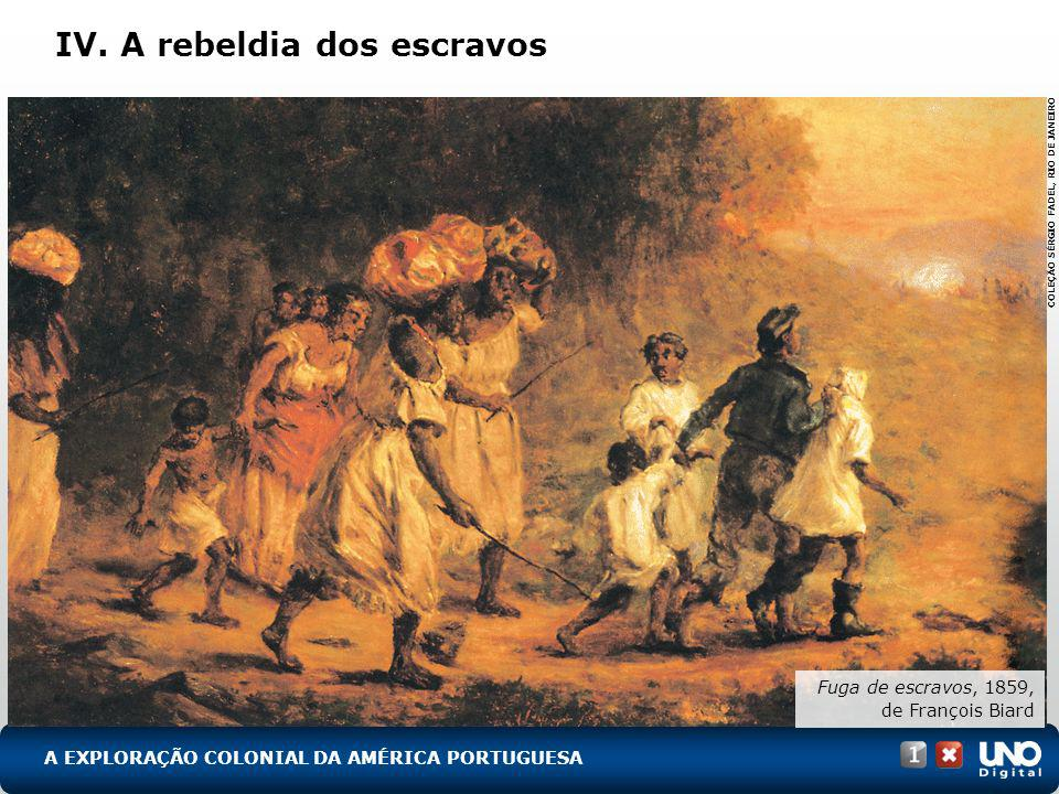 IV. A rebeldia dos escravos