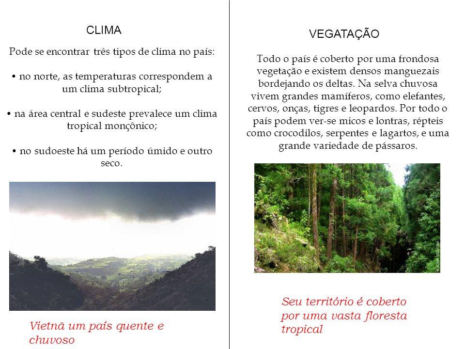Seu território é coberto por uma vasta floresta tropical