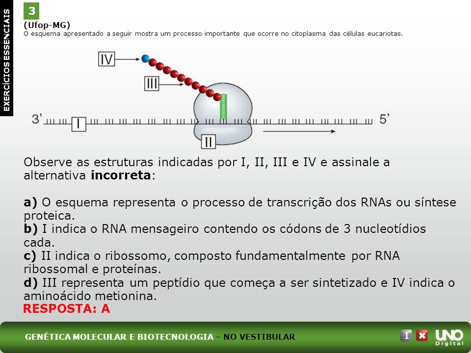 Bio-cad-1-top-6 – 3 Prova 3.