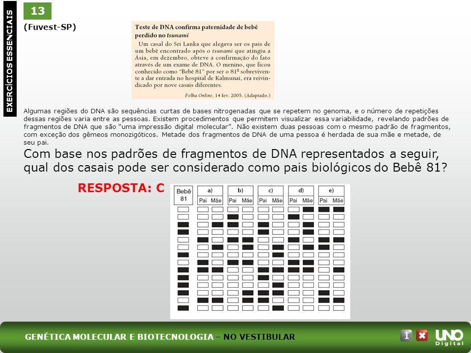 Bio-cad-1-top-6 – 3 Prova 13. (Fuvest-SP)