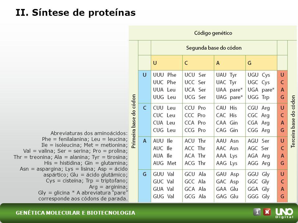 II. Síntese de proteínas