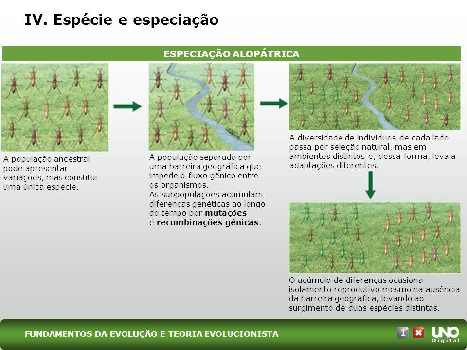 IV. Espécie e especiação