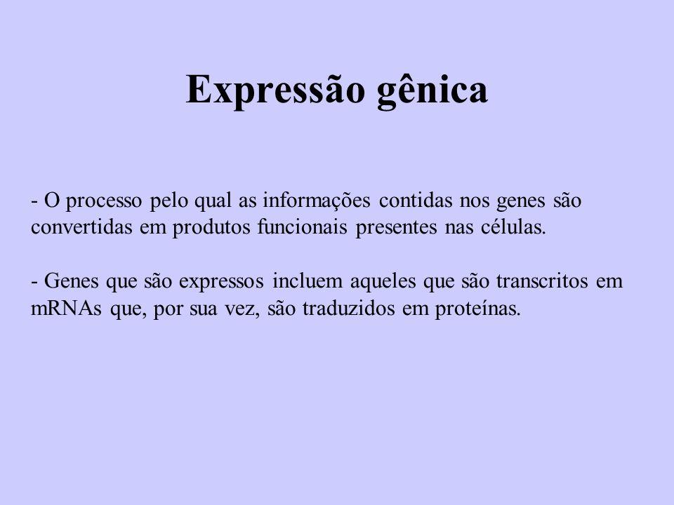Expressão gênica - O processo pelo qual as informações contidas nos genes são convertidas em produtos funcionais presentes nas células.