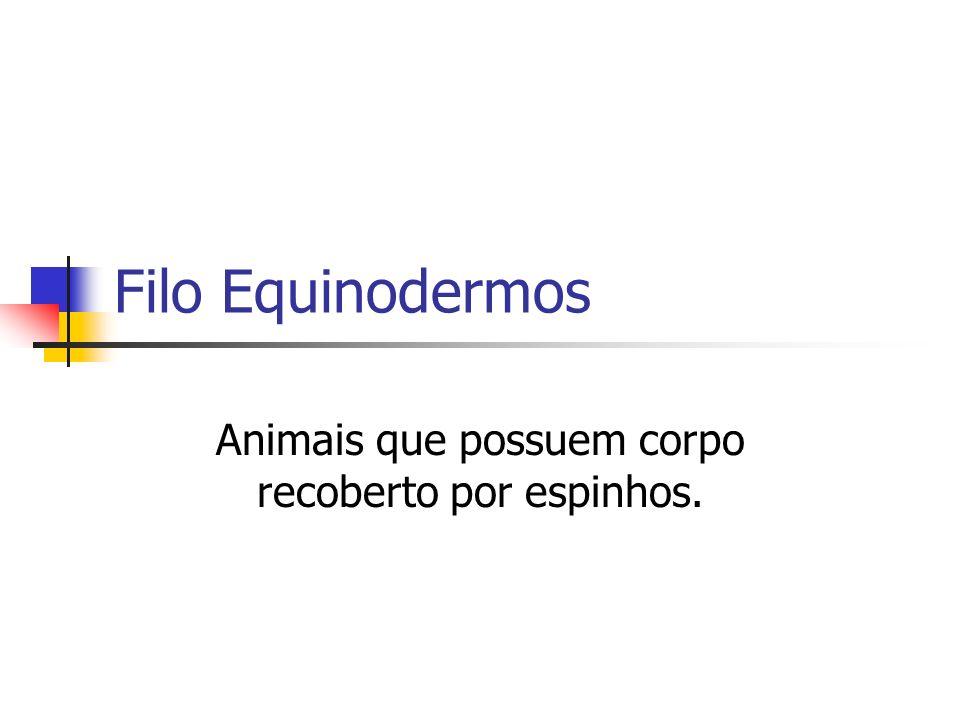 Animais que possuem corpo recoberto por espinhos.