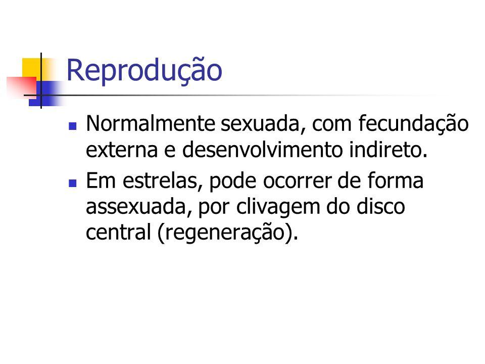 Reprodução Normalmente sexuada, com fecundação externa e desenvolvimento indireto.