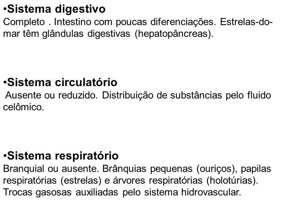 Sistema digestivo Sistema circulatório Sistema respiratório
