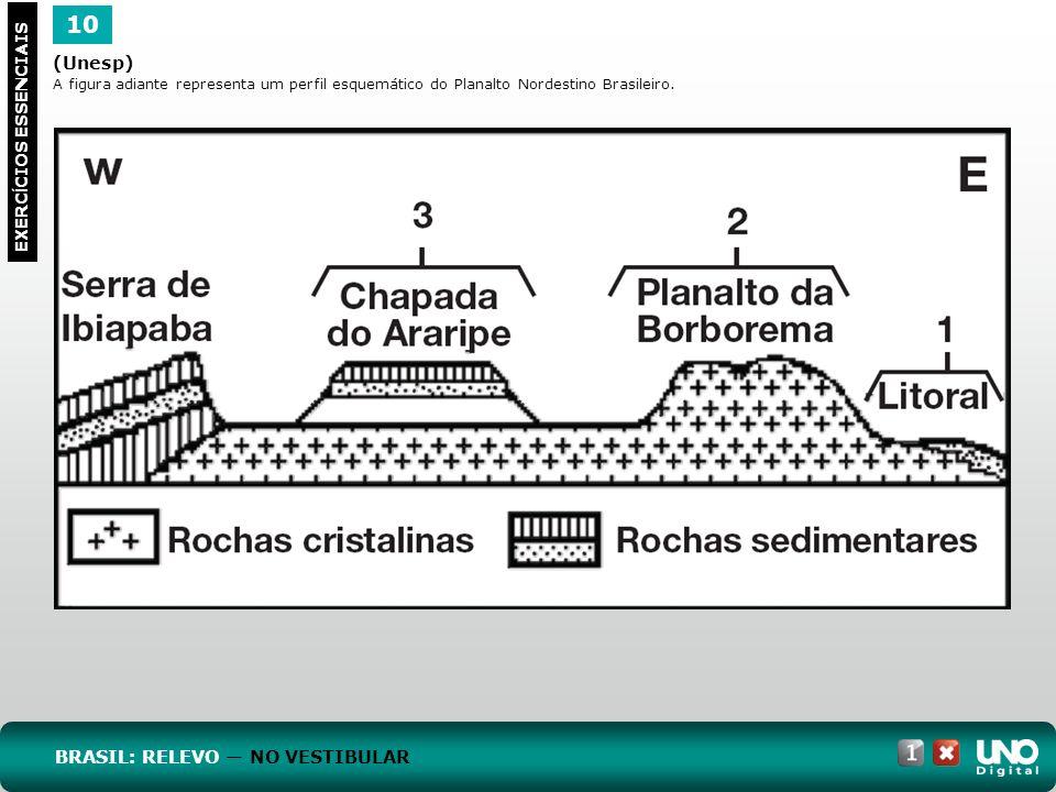 10 Geo-cad-1-top-2- 3 prova (Unesp) BRASIL: RELEVO — NO VESTIBULAR