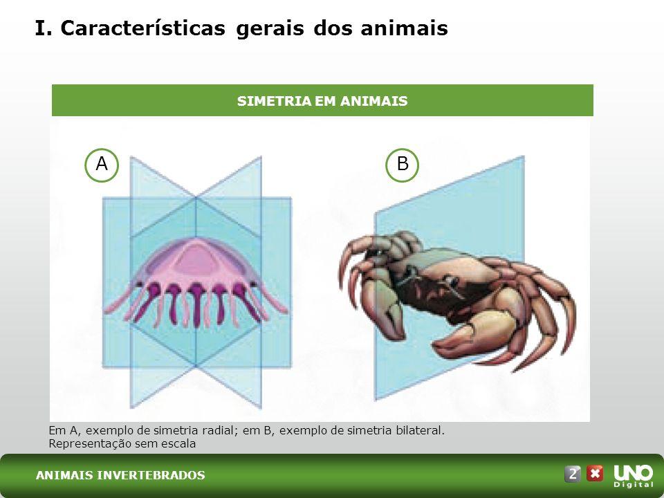 I. Características gerais dos animais