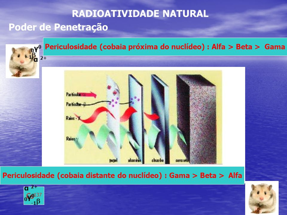 Periculosidade (cobaia próxima do nuclídeo) : Alfa > Beta > Gama