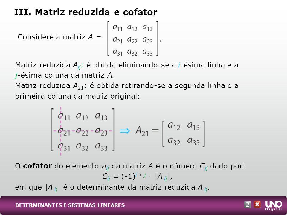 III. Matriz reduzida e cofator