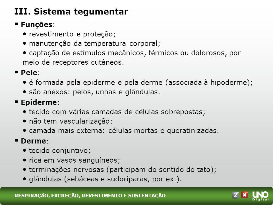 III. Sistema tegumentar