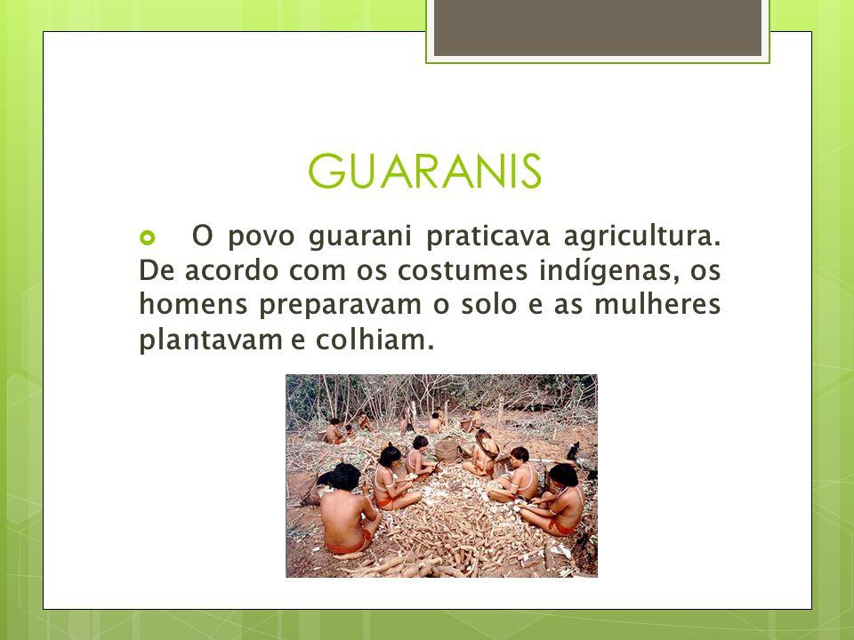 GUARANIS O povo guarani praticava agricultura.